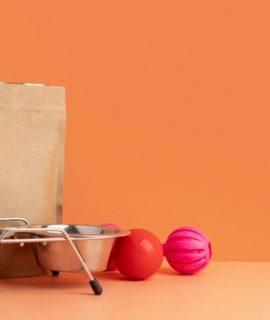 Confira 3 tendências do mercado de comidas pet e como segui-las!